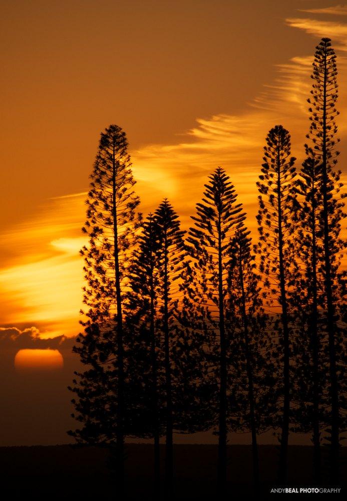 Cooking up a Lanai sunset
