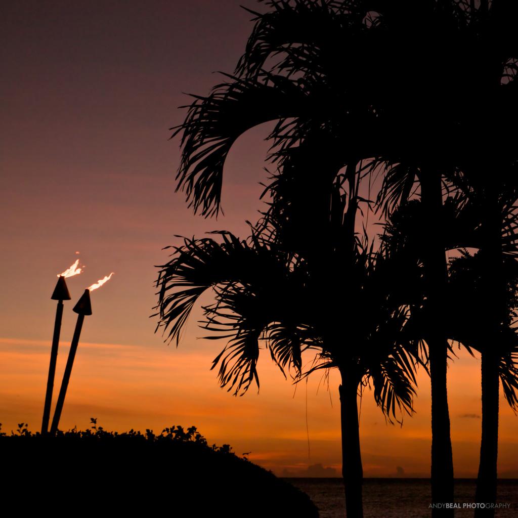 BealPhoto-Hawaii-2014 8